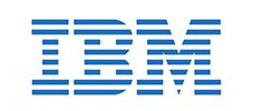IBM sized